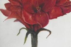 Nr. 1 Rote Blume